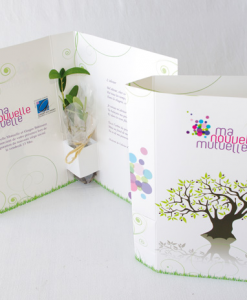 Carte postale avec plante