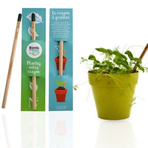 Crayon de graines à planter ARBRE A BULLES